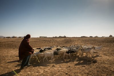 Nearly 40 Million People in 17 African Countries Facing The Harsh Effects Of Drought This Year