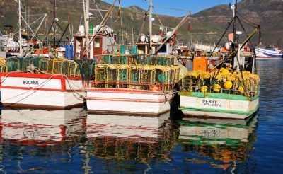 How Climate Change Might Hit African Fisheries: Catches Could Fall By Record 60% In Parts Of The Continent
